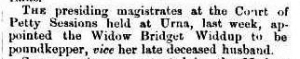 Riverine Herald (Echuca, Vic. : Moama, NSW : 1869 - 1954), Tuesday 21 March 1876, page 3